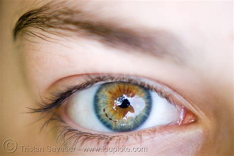 most beautiful colors image gallery most beautiful eye color