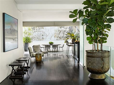 interior plant design customized   home  trained