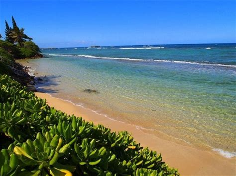 bathtub beach oahu top 25 ideas about hawaii vacation on pinterest north