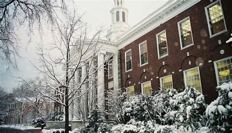 Harvard Interviews Mba by How Not To Your Hbs