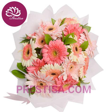 Jual Buket Bunga Kotak by Gambar Klasifikasi Morfologi Tanaman Bunga Sedap Malam