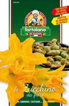 zucchino da fiore produzione e vendita zucchino striato d italia da fiore