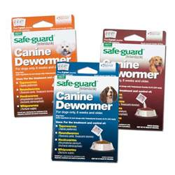 how to deworm a home remedies safe guard 174 canine dewormer premier1supplies