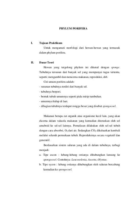 susunan membuat laporan praktikum laporan praktikum porifera kelompok 6