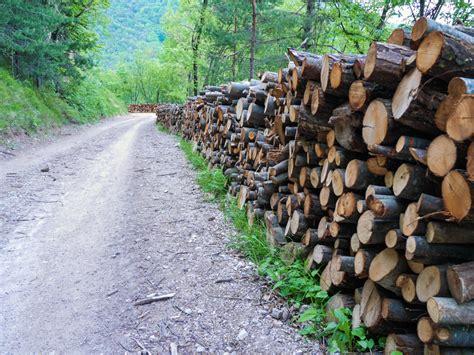 Wandlen Mit Holz by Holz Am Wegesrand Wandern S 252 Dtirol Bis Gardasee