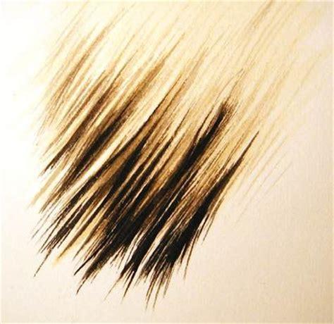 watercolor tutorial hair watercolour artist diary painting hair fur in watercolour