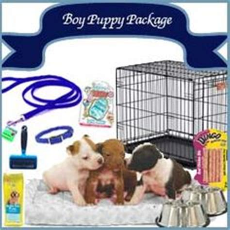 puppy care package traveling with puppy on 26 pins