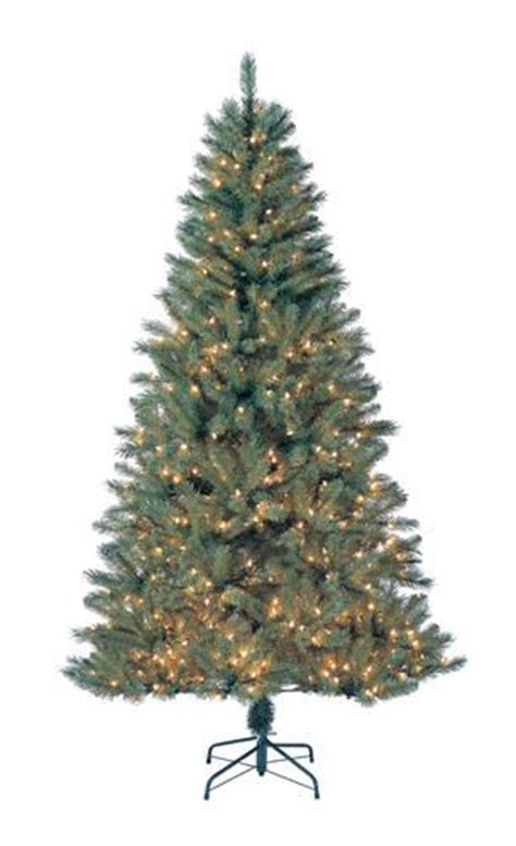 slim douglas fir christmas tree best 25 douglas fir