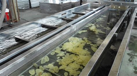 vegetables 5 lines industrial cleaning asparagus vegetable production line