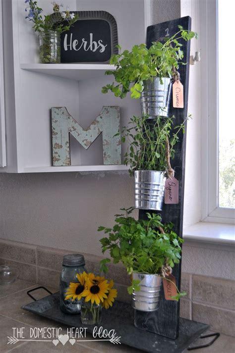 herb shelf grow herbs right in your kitchen for under 10 gardens