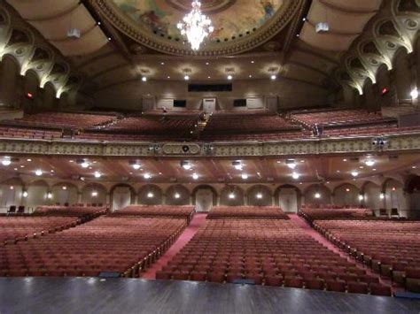 section 8 nyc phone number orpheum theatre vancouver all you need to know before