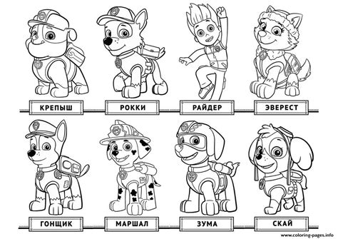 paw patrol free printable coloring sheets 1aa72f4d953f