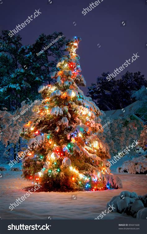 snowball lights for christmas tree snow covered tree colorful lights stock photo 89441668