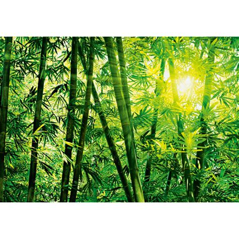 Home Decor Murals Bamboo Forest Wall Mural Dm123 Bamboo Forest Photomural
