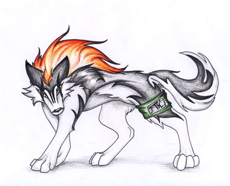 Anime Wolf by Anime Wolf By Ti Killa On Deviantart