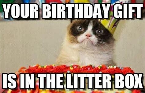 Grumpy Cat Happy Birthday Meme - slapcaption com caption funny photos and meme gallery