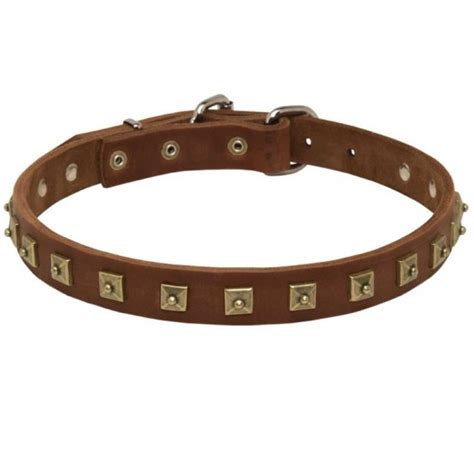 Handcrafted Collars - handcrafted 1 row square studded leather pointer