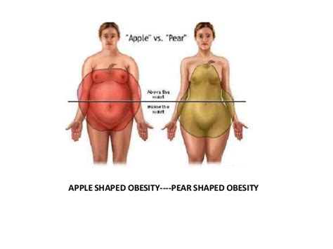 the human psyche and the pet obesity epidemic obesity mother of chronic disease