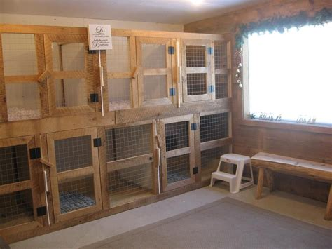 boarding kennel designs and layouts dog boarding kennels