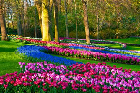 beautiful spring pictures most beautiful spring wallpapers free download free all