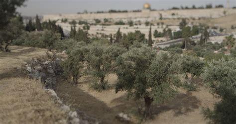 garden of garden of gethsemane