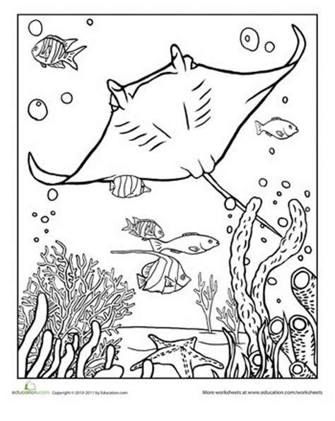 worksheets manta ray coloring page coloring sheets