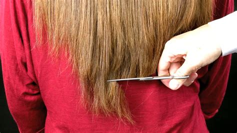 hair cutting ways for the ends professional hairdresser cutting long dry hair split ends