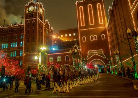 you need to see the anheuser busch brewery lights in st louis