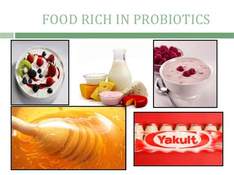 probiotics before bed diseases in the digestive system student nurses