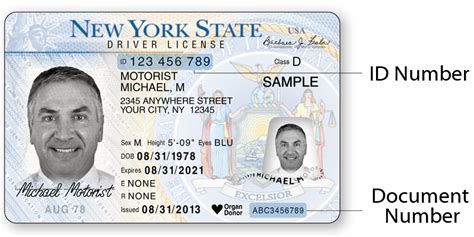 Document Number On New York License sle new york state dmv photo documents new york state
