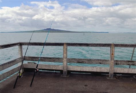 fishing boats nz auckland fishing without a boat auckland s top fishing wharfs