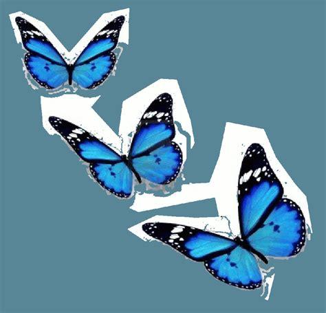 imagenes animadas de mariposas volando gifs un poco de todo