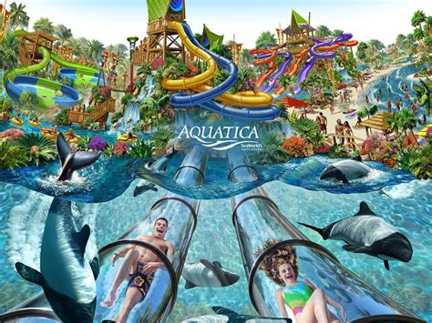 orlando parks orlandotastic water parks a hit this summer in orlando