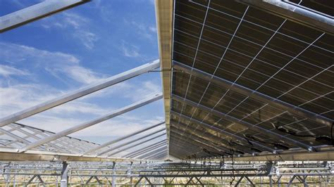 solar panels integrated into the venlo greenhouse roof