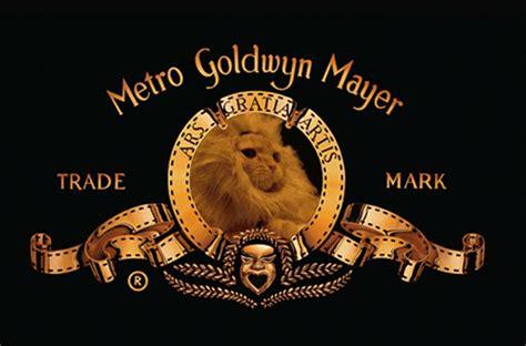 lion film intro metro goldwyn mayer gifs wifflegif