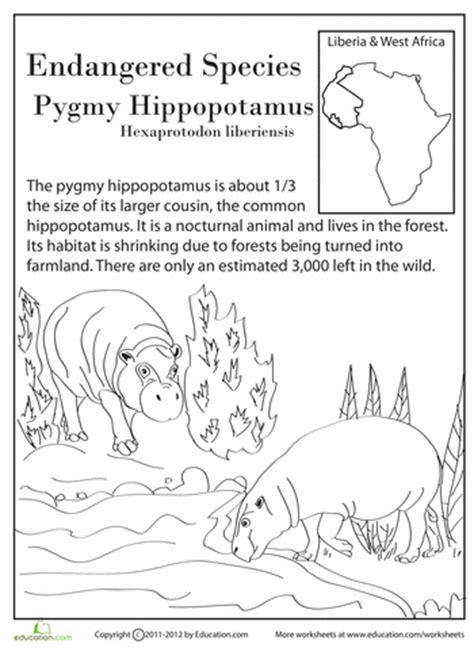 printable endangered animal fact sheets endangered species pygmy hippo endangered species