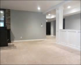 basement wall ideas basement ideas basement ideas interior design i like the half wall we need this to keep dogs