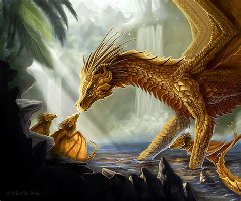 drachen matte golden by amisgaudi on deviantart