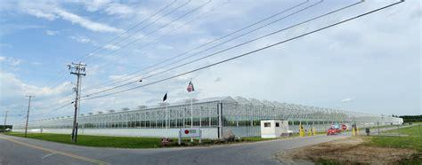 backyard farms maine backyard farms becomes first globalgap certified maine