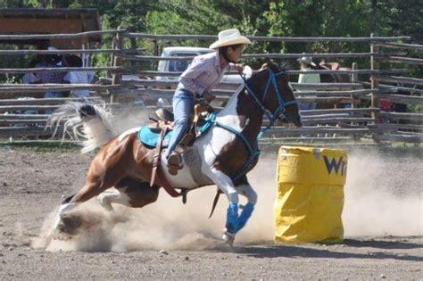 barrel racing horse hair braids paint barrel horses paint horse barrel racing paint
