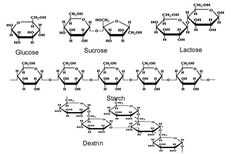 carbohydrates molecular structure carbohydrates carbohydrate molecular structure