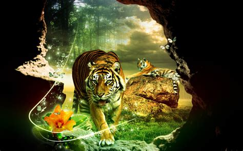 tiger tattoo hd wallpaper 3d tiger wallpaper wallpapersafari