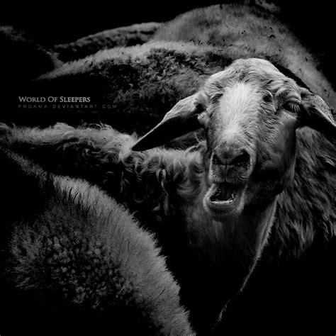 World Of Sleepers by World Of Sleepers By Proama On Deviantart