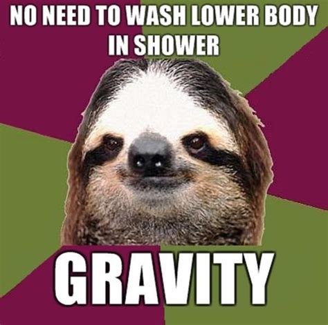 Best Sloth Memes - 43 top sloth meme you can t stop laughing after seeing