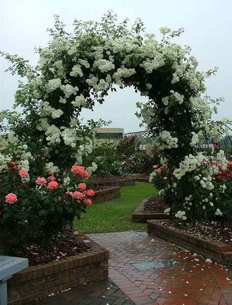 beautiful small gardens one decor roses for beautiful outdoor decor charming garden designs