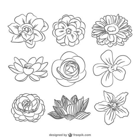 imagenes en blanco y negro flores pack de flores en blanco y negro descargar vectores gratis