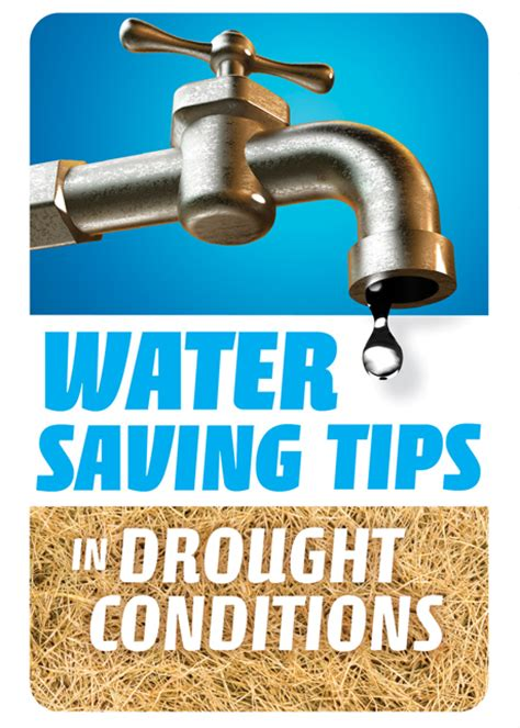 water saving tips in drought conditions water education