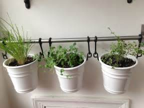 Wall Hanging Indoor Herb Garden - ikea things bright and beautiful