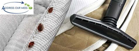 bed bug preparation heavy duty clean up hoarding cleaning blog