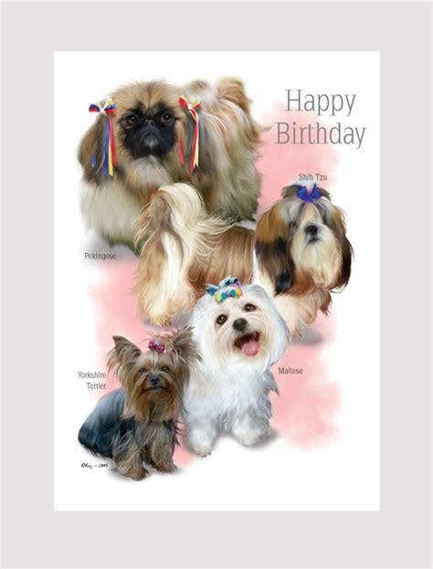 shih tzu birthday happy birthday pekingese shih tzu maltese terrier lovadog department